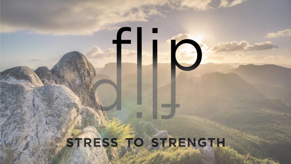 FLIP: Week 3 Image