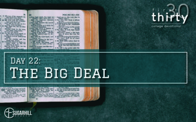 Day 22 – The BIG Deal