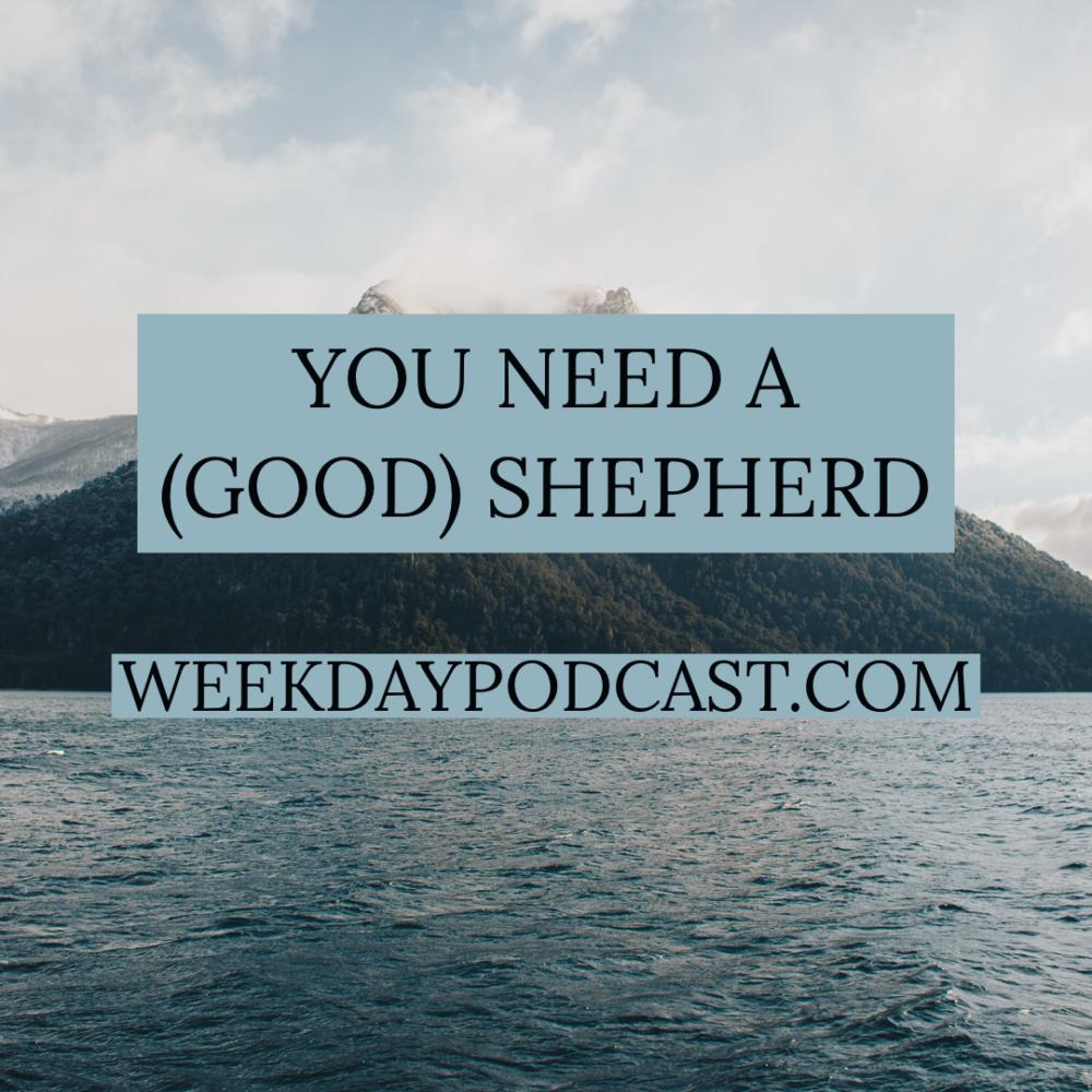 You Need a (Good) Shepherd Image