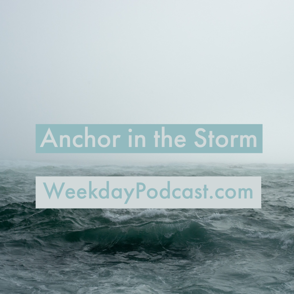Anchor in the Storm Image