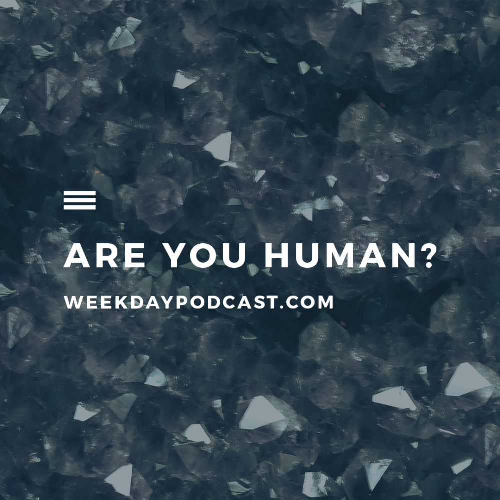 Are You Human? Image