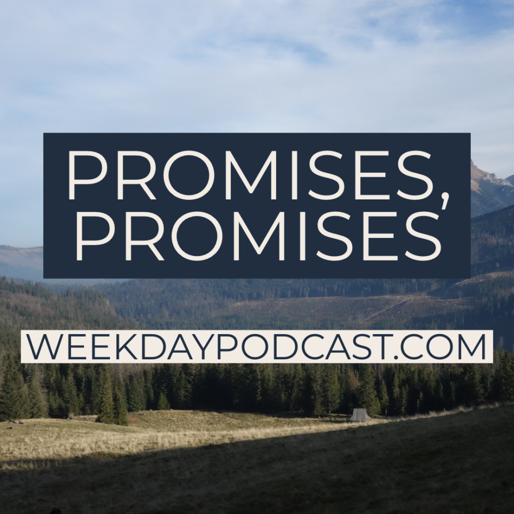 Promises, Promises Image