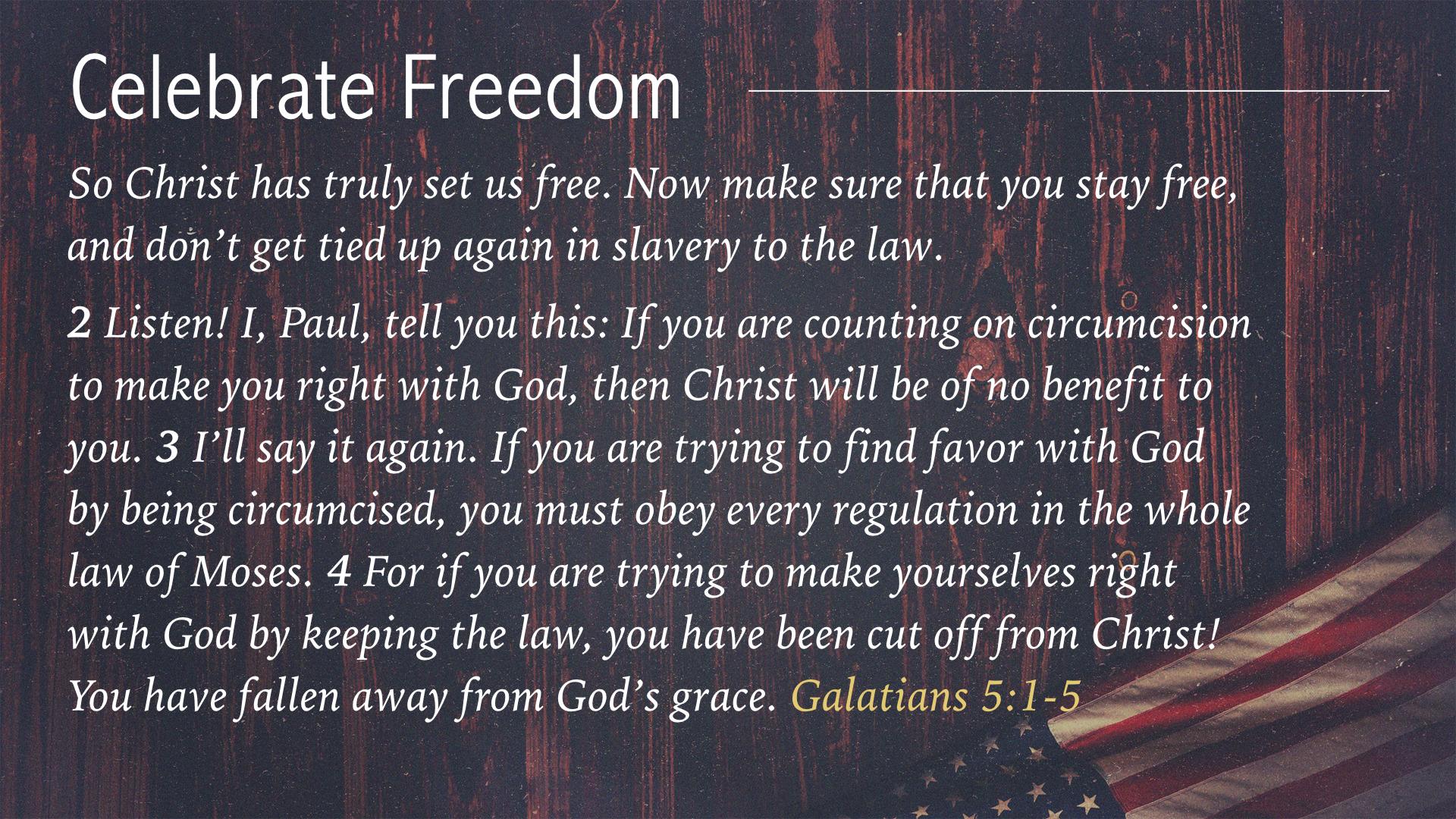 Celebrate Freedom July 3 2016.002