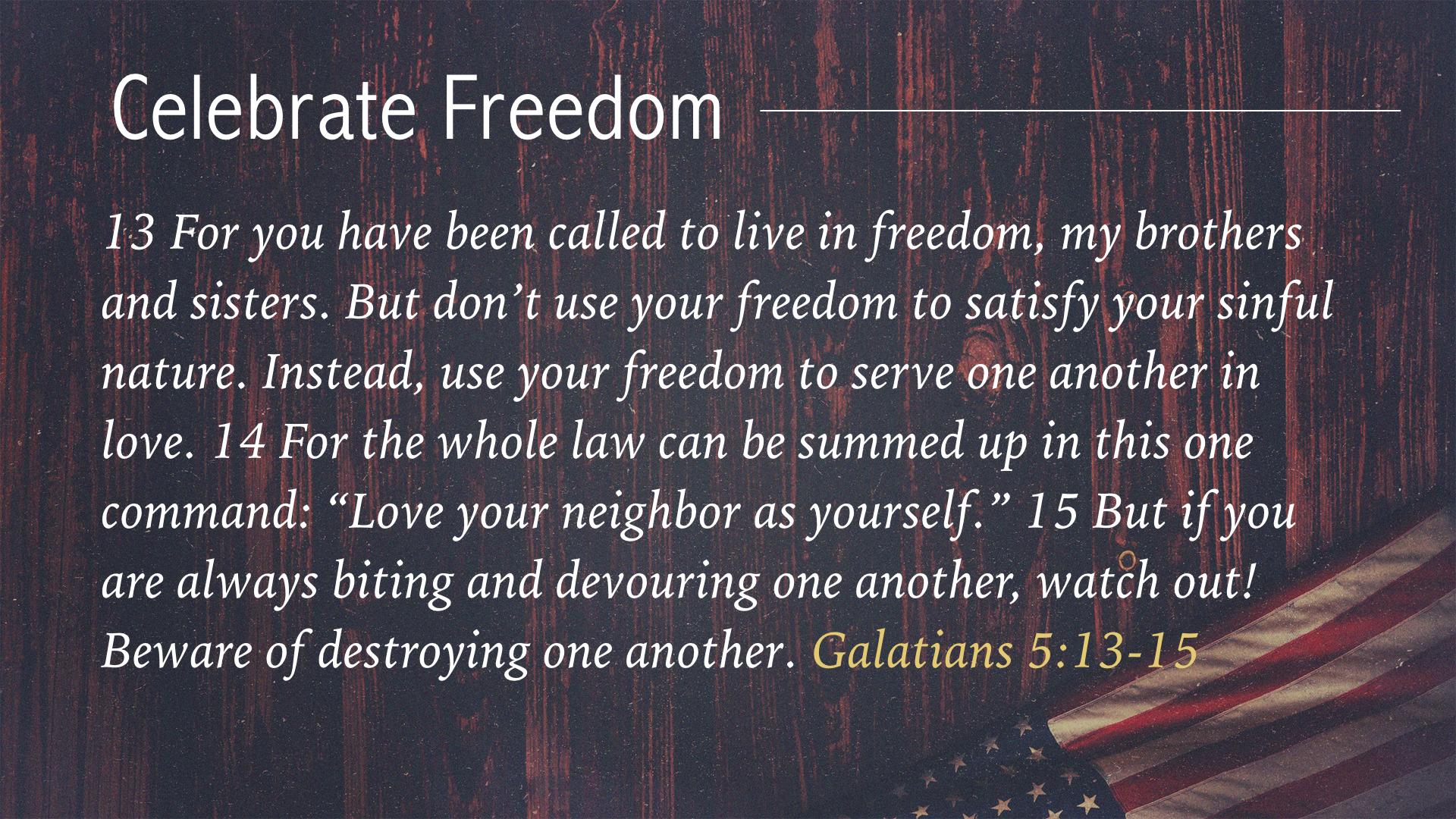 Celebrate Freedom July 3 2016.009