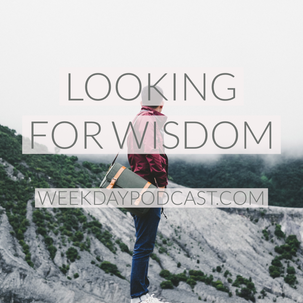 Looking for Wisdom Image