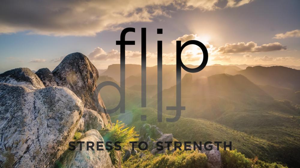 FLIP: Week 2 Image
