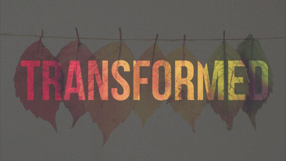 Transformed: Week 4